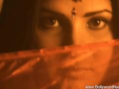 Bollywood Nudes Insides..